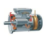 motor11